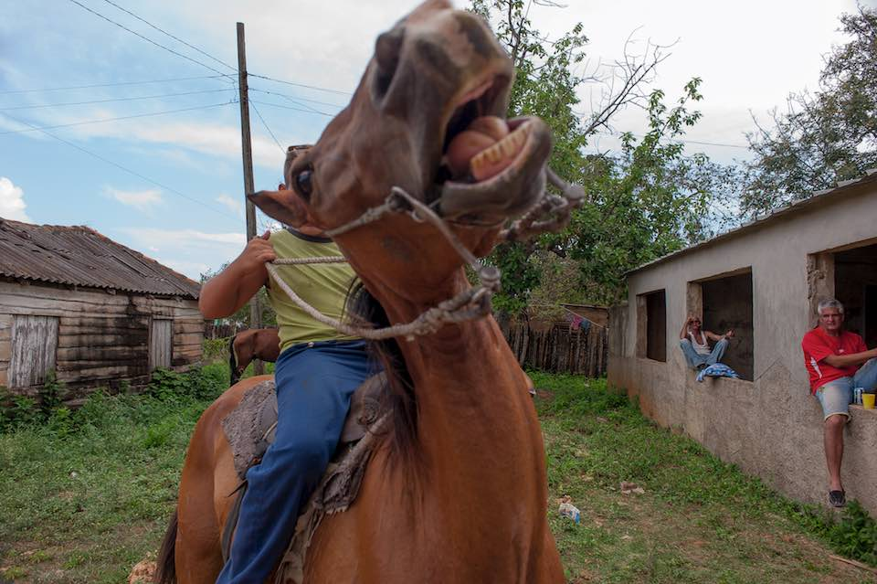 Boy on a horse, El Cayuco, 2015